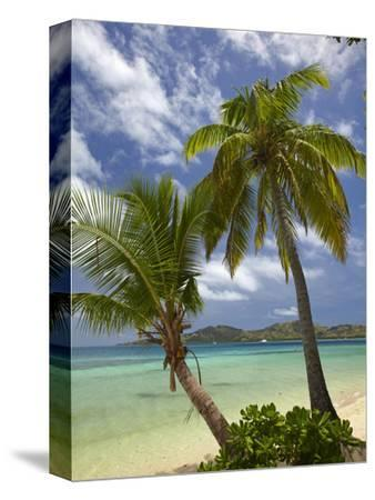Beach and Palm Trees, Plantation Island Resort, Malolo Lailai Island, Mamanuca Islands, Fiji-David Wall-Stretched Canvas Print