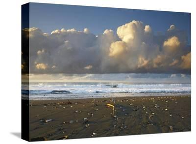 Beach and waves, Corcovado National Park, Costa Rica-Tim Fitzharris-Stretched Canvas Print