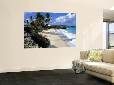 Beach at Bottom Bay, Barbados, Caribbean-Doug Pearson-Wall Mural