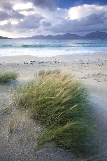 Beach at Luskentyre with Dune Grasses Blowing-Lee Frost-Photographic Print