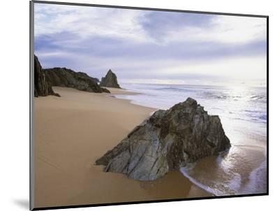 Beach at Mimosa Rocks National Park in Australia-Theo Allofs-Mounted Photographic Print