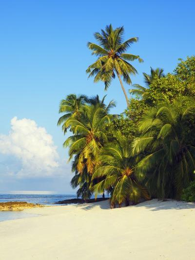 Beach at Soneva Fushi Resort in the Baa Atoll-Frank Krahmer-Photographic Print