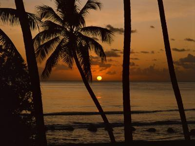 Beach at Sunset, Barbados, West Indies, Caribbean, Central America-Harding Robert-Photographic Print