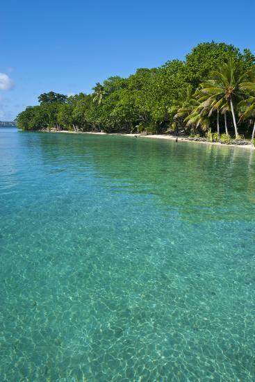 Beach at the Aore Islet before the Island of Espiritu Santo, Vanuatu, South Pacific-Michael Runkel-Photographic Print