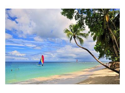 Beach at The Sandpiper Hotel, Holetown, St. James, Barbados, Caribbean--Art Print