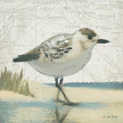 Beach Bird I-James Wiens-Art Print