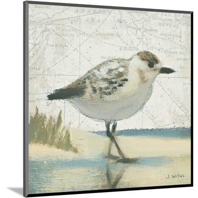 Beach Bird I-James Wiens-Mounted Print