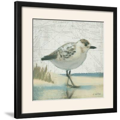 Beach Bird I-James Wiens-Framed Photographic Print