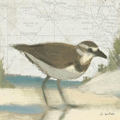 Beach Bird III-James Wiens-Art Print