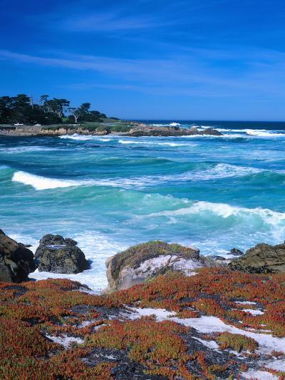 Beach, California, USA-John Alves-Photographic Print