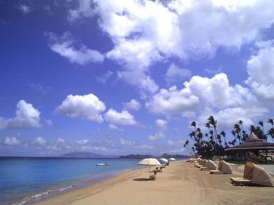 Beach Chairs and Palms, Pinneys Beach, Nevis, Caribbean-Bill Bachmann-Photographic Print