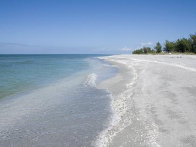 Beach Covered in Shells, Captiva Island, Gulf Coast, Florida, United States of America-Robert Harding-Photographic Print