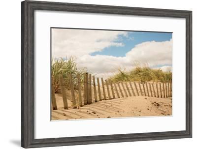 Beach Dunes I