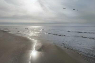 Beach Flight-Monte Nagler-Art Print