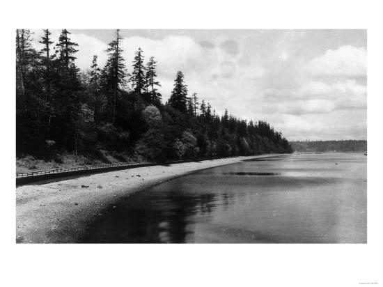 Beach Front View of Point Defiance Park - Tacoma, WA-Lantern Press-Art Print