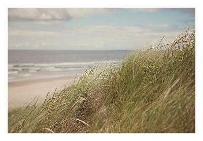 Beach Grass I-Irene Suchocki-Art Print