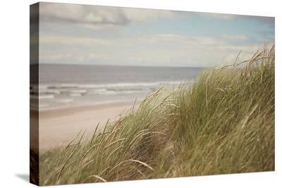 Beach Grass I-Irene Suchocki-Stretched Canvas Print