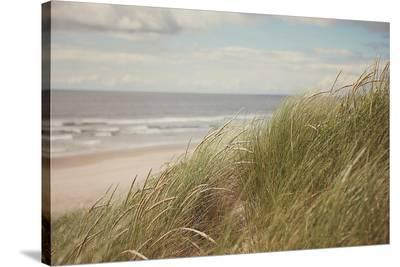 Beach Grass I-Irene Suchocki-Stretched Canvas Print