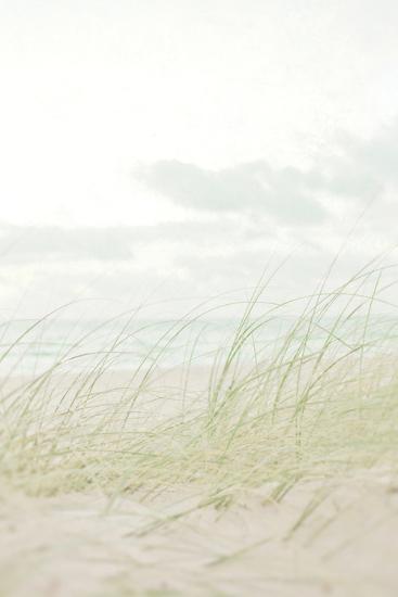 Beach Grass I-Elizabeth Urquhart-Photo