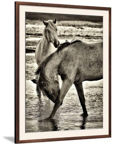Beach Horses I-David Drost-Framed Photographic Print