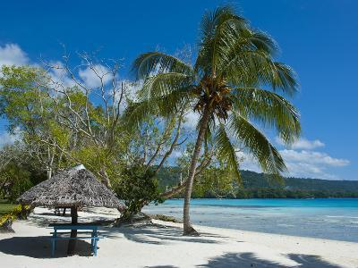 Beach Hut at Champagne Beach, Island of Espiritu Santo, Vanuatu, South Pacific, Pacific-Michael Runkel-Photographic Print