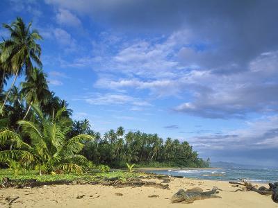 Beach in Limon, Costa Rica-Guido Cozzi-Photographic Print