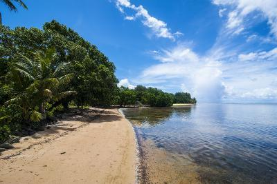 Beach in the North of the Island of Babeldaob, Palau, Central Pacific-Michael Runkel-Photographic Print
