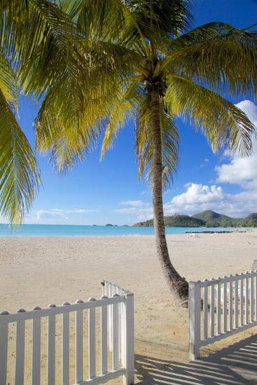 Beach, Jolly Harbour, St. Mary, Antigua, Leeward Islands, West Indies, Caribbean, Central America-Frank Fell-Photographic Print