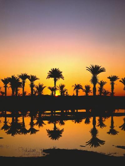Beach, Lagoon, Silhouette, Palms, Sunset-Thonig-Photographic Print