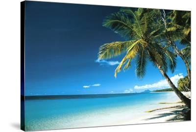Beach Morning Art Print Poster