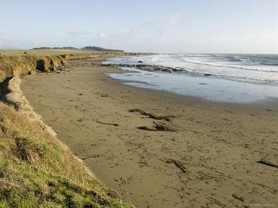 Beach North of San Simeon, California-Rich Reid-Photographic Print