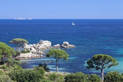 Beach of Palombaggia, Corsica, France, Mediterranean, Europe-Markus Lange-Photographic Print