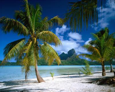 Beach on Bora Bora, Island of Tahiti, French Polynesia, The South Seas