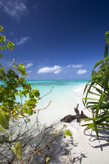 Beach on Desert Island, Maldives, Indian Ocean, Asia-Sakis Papadopoulos-Photographic Print