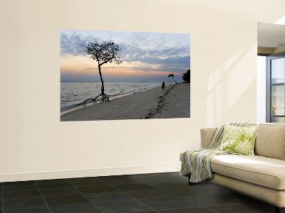 Beach on East Side of Havelock Island, Near Barefoot Scuba-Johnny Haglund-Wall Mural