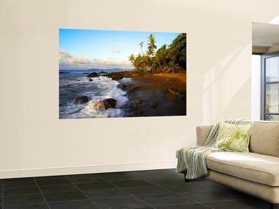 https://imgc.artprintimages.com/img/print/beach-on-pacific-ocean-on-west-coast-of-costa-rica_u-l-pfgxl80.jpg?artPerspective=n