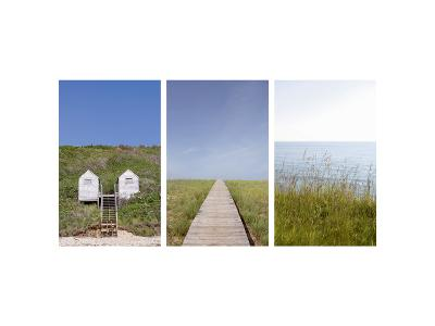 Beach Path Triptych--Photo