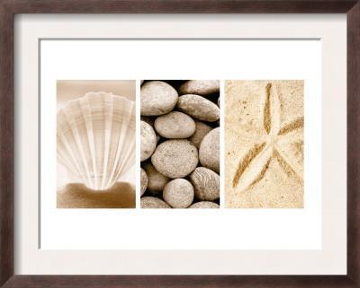 Beach Patterns Triptych