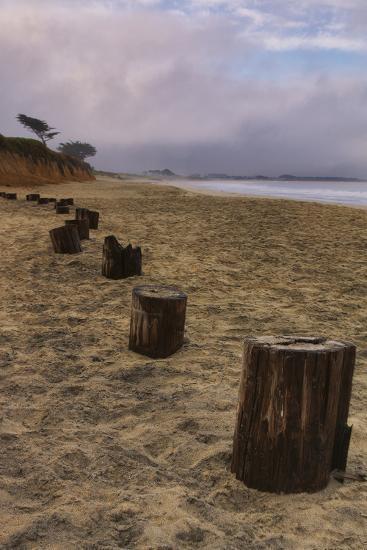 Beach Posts at Half Moon Bay-Vincent James-Photographic Print