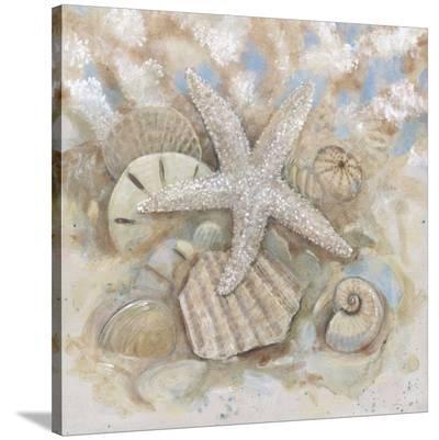 Beach Prize IV-Arnie Fisk-Stretched Canvas Print