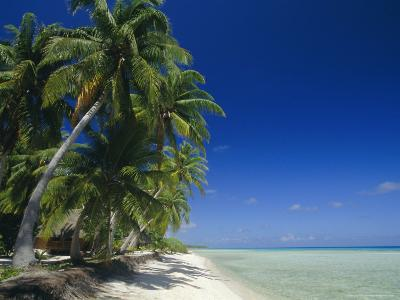 Beach, Rangiroa Atoll, Tuamotu Archipelago, French Polynesia, South Pacific Islands, Pacific-Sylvain Grandadam-Photographic Print