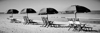 Beach Reunion-Gail Peck-Photographic Print