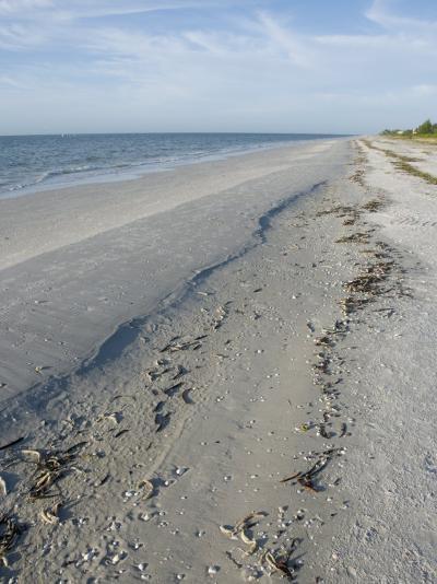 Beach, Sanibel Island, Gulf Coast, Florida, United States of America, North America-Robert Harding-Photographic Print