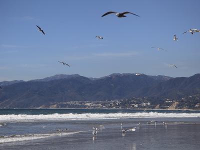 Beach, Santa Monica, Malibu Mountains, Los Angeles, California-Wendy Connett-Photographic Print