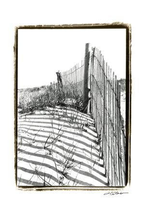 https://imgc.artprintimages.com/img/print/beach-scape-iv_u-l-pxn2q40.jpg?p=0
