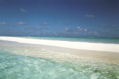 Beach Scene, Shallow Water and Water's Edge--Photographic Print