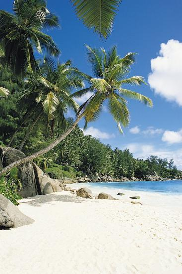 Beach, Seychelles-Robert Harding-Photographic Print