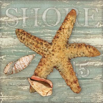 https://imgc.artprintimages.com/img/print/beach-shells-starfish_u-l-q19wkif0.jpg?p=0