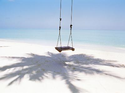 Beach Swing And Shadow of Palm Tree on Sand--Photographic Print