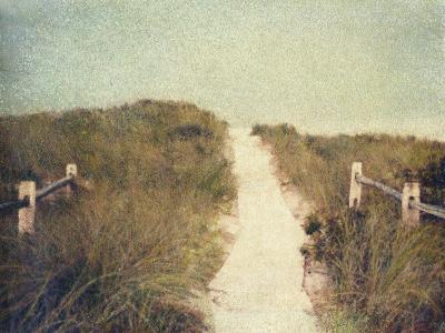Beach Trail-Jennifer Kennard-Photographic Print